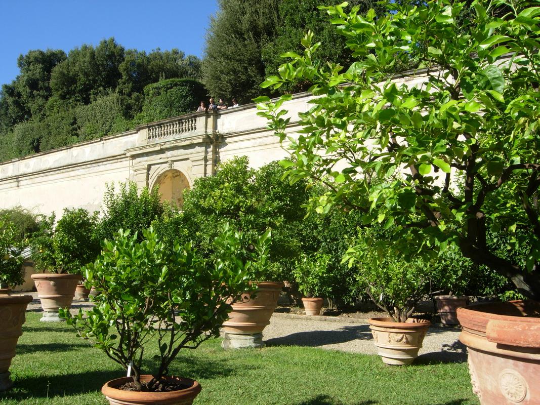 A Castello Villa kertje