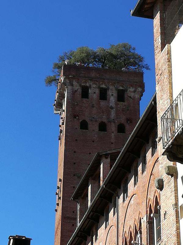 Guinigi torony